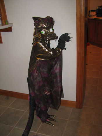 Sandi J.'s Golden Dragon Costume