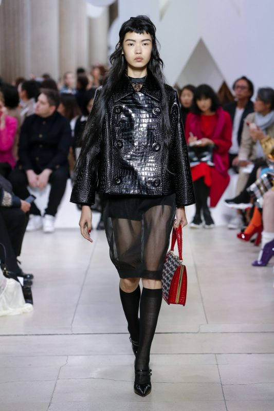 Miu Miu   Spring 2019 Ready-to-Wear