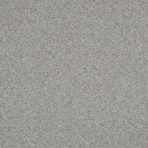 Beige and Gray Upholstery Tweed