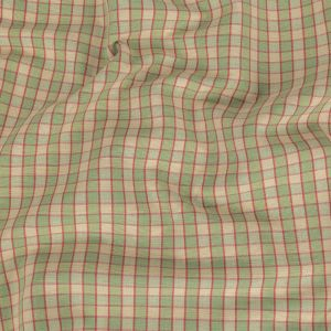 Mint Green and Red Checked Handwoven Cotton