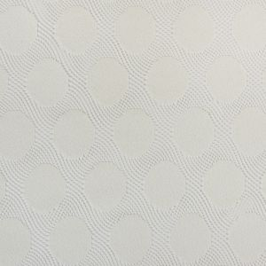Whisper White Polka Dots on Netted Lace