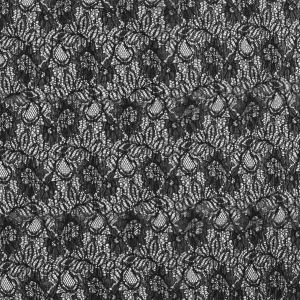 Black Re-Embroidered Floral Lace