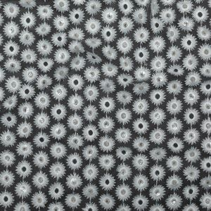 Milly 3D Floral Embroidered Tulle with Clear Sequins