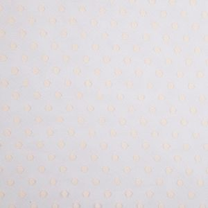 Dotted Beige Tulle