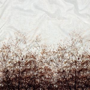 Mood Exclusive Celestial Canopy White Cotton Voile